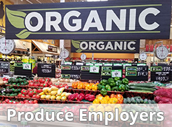 Look who is hiring, produce jobs amd farm jobs
