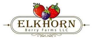 Elkhorn Berry Farms