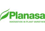 Planasa LLC